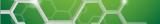 Anticorps primaires Anti-Cheval - PE/Atto 594