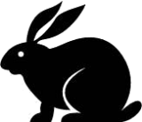 Recombinant Monoclonal Anti-CD52 [Clone YTH 34.5-G2b (Campath-1G)] Rabbit IgG kappa
